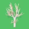 Sheep Bronchial Tree Plastinated Specimen Animal Specimen