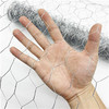 Hexagonal Wire Mesh     hexagonal mesh     hexagonal gabion box     chicken egg layer cages
