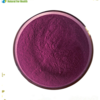 Lingonberry Extract Bilberry Fruit Extract Powder