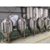 Cassman Conical Fermentation Unitank 400l  for Brew Pub