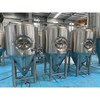 Cassman Conical Beer Fermentation 10bbl/1000L