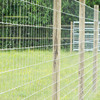 Mesh Cattle Galvanized Fixed Knot Wire Mesh Farm Fence High Quality
