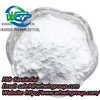 New BMK Powder CAS 5413-05-8 with 99% Purity and Good Price
